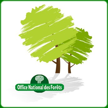 Photos de office national des for ts - Office national des foret ...