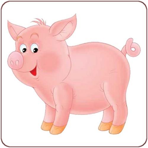 animaux cochons d inde belle image